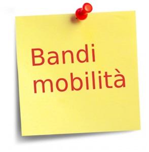 BANDO MOBILITA\' VOLONTARIA