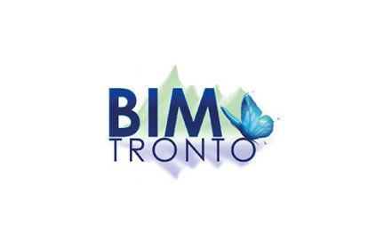 BIM TRONTO - BANDO PER TESI DI LAUREA 2017